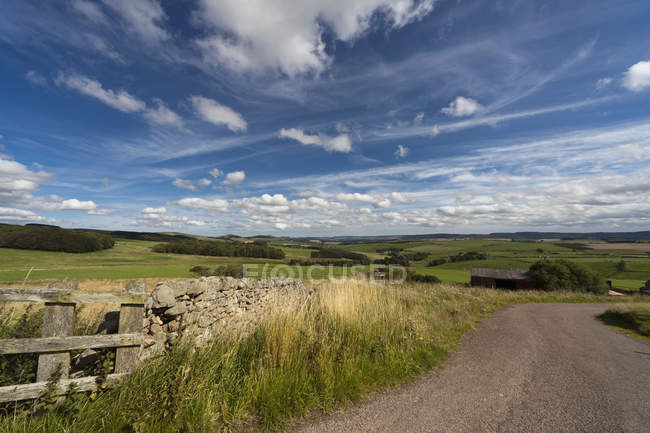 Road With Hilly Landscape — Stock Photo