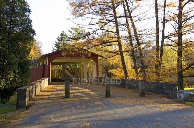 Überdachte Brücke mit dem Herbst Blätter — Stockfoto