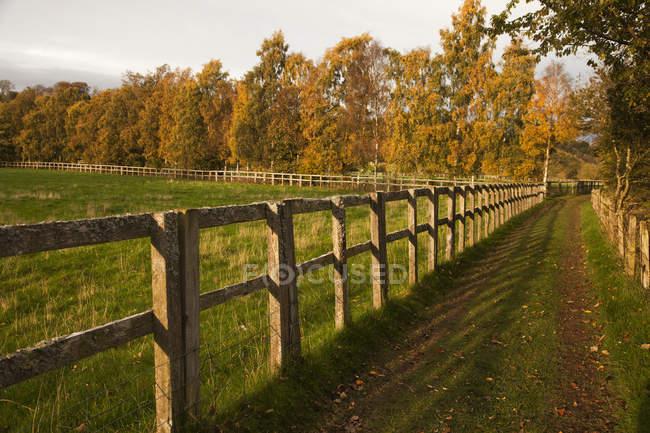 Шины вдоль забора в сельской местности — стоковое фото