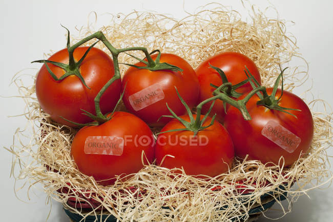 Tomates em uma cesta com rótulos — Fotografia de Stock