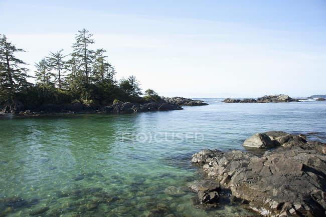 Küste mit Wald an Land — Stockfoto