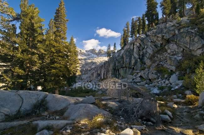 Paese delle montagne della Sierra Nevada, Sequoia National Pa — Foto stock