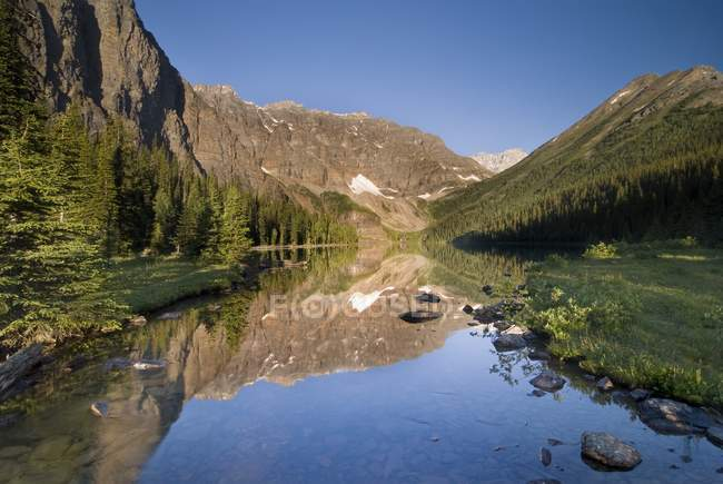 Calm mountain river — Stock Photo