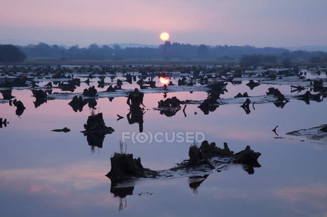 Gearagh près de Macroom au coucher du soleil — Photo de stock