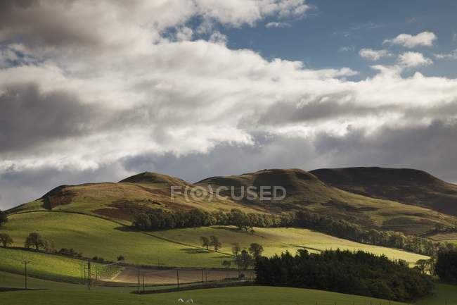 Landscape With Rolling Hills And Powerlines — Stock Photo