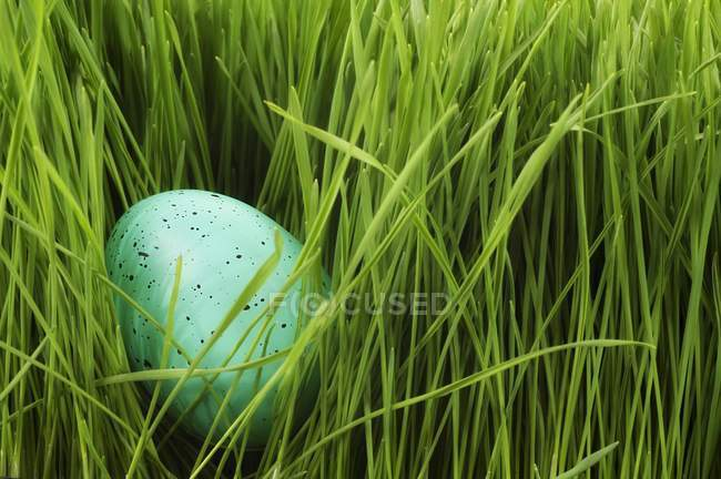 Speckled Egg In Grass — Stock Photo