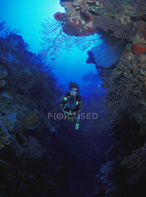 Mergulhador em Gap — Fotografia de Stock