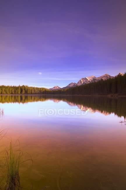 Scenic Reflection in mountain lake — Stock Photo