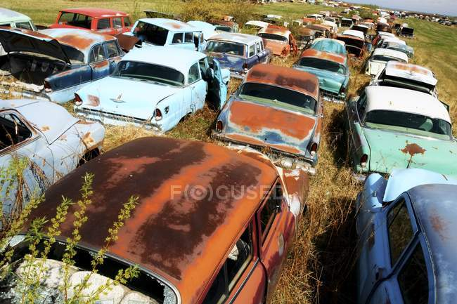 Old Rusted Cars — Stock Photo