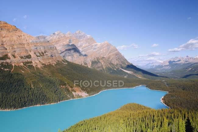Lago Peyto, banff national park, alberta, canada — Foto stock