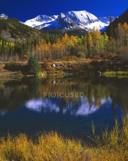 Vue de la scène d'automne — Photo de stock