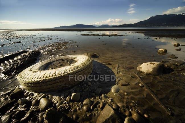 Стару шину на пляжі — стокове фото