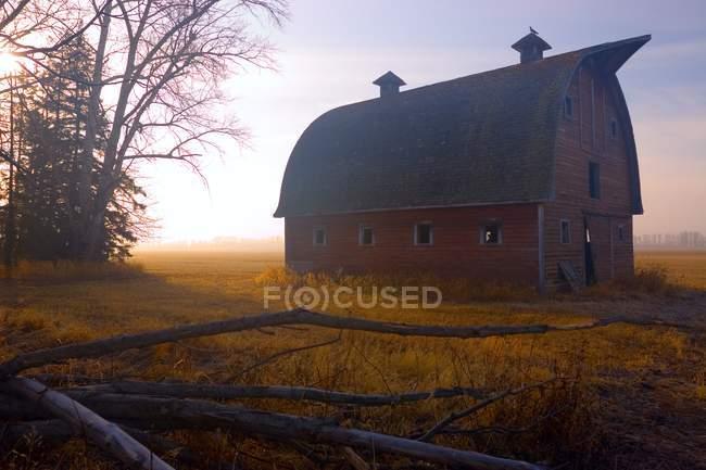 Scheune sitzt im Morgennebel — Stockfoto