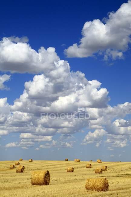 Heuballen mit weißen Wolken — Stockfoto