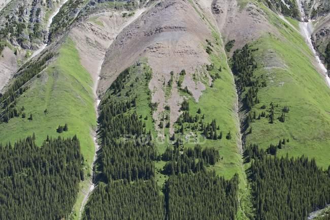 Flanc de montagne avec paroi rocheuse — Photo de stock