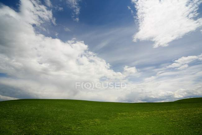 Green Landscape in countryside — Stock Photo