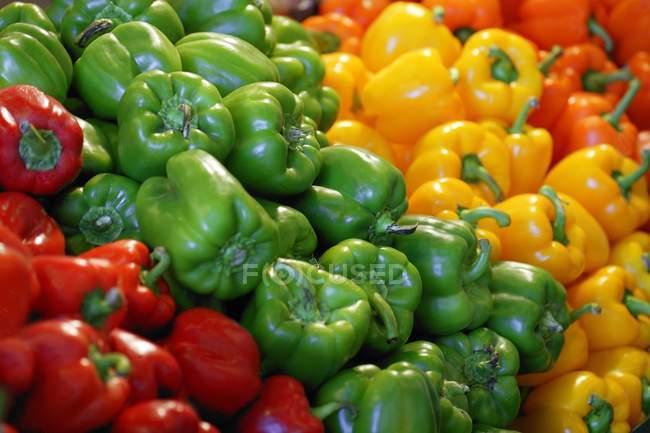 Tas de poivrons — Photo de stock