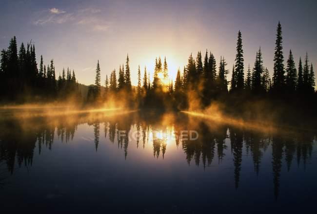 Rayons de soleil à travers brume sur l'étang — Photo de stock