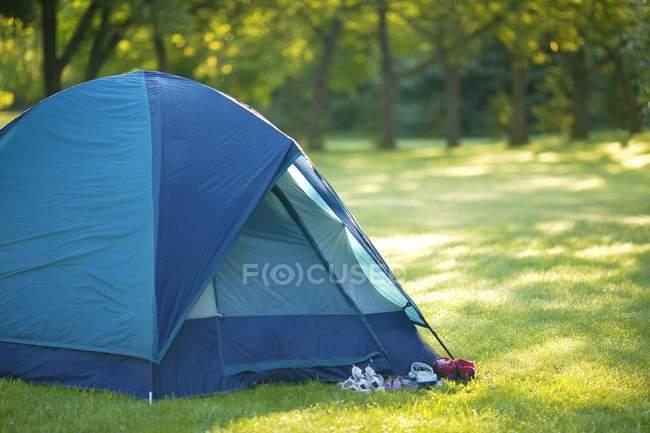 Tente de camping en forêt — Photo de stock