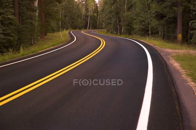 Strada tortuosa in foresta — Foto stock