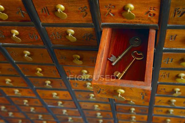 Китайский кабинет с ключами, крупным планом, копировальным пространством — стоковое фото