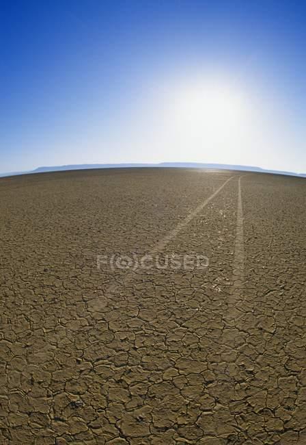 Faixas de carro no deserto de Alvord — Fotografia de Stock