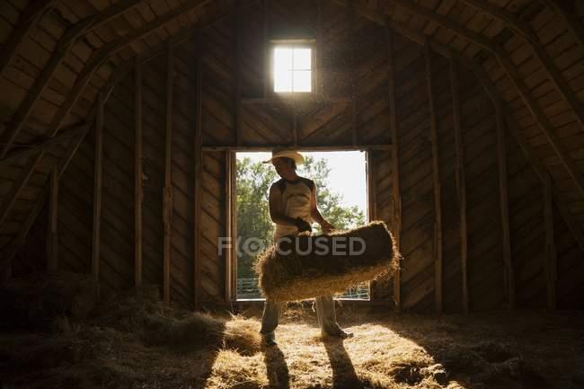 Uomo che muove una balla di fieno nel fienile — Foto stock