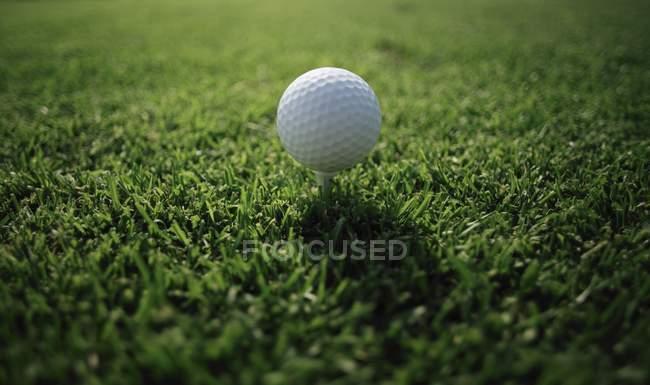 Golfball auf dem Abschlag — Stockfoto