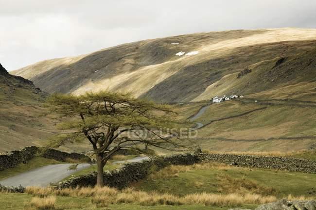 Sanfte Hügel und Steinmauern In Kirkstone Pass — Stockfoto