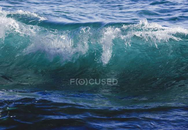 Ocean Wave In Clear Sea Water — Stock Photo