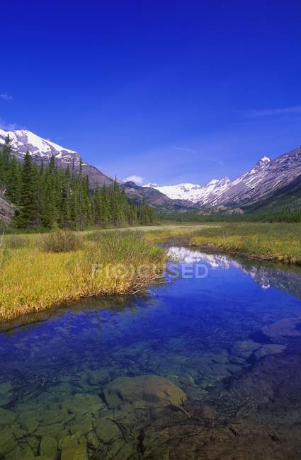 Rockies Provincial Park — Stock Photo
