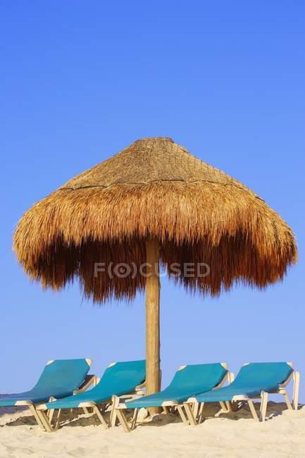 Palm хатини, пропонуючи тіні — стокове фото