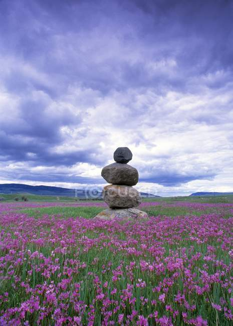 Stone Marker In Field — Stock Photo