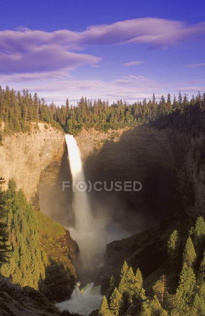 Узкий водопад в лесной галли — стоковое фото