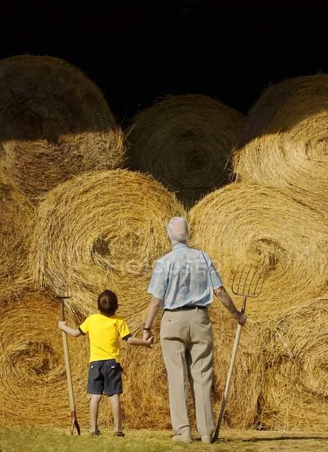 Дед и внук стоя с вилами против тюками Сена — стоковое фото