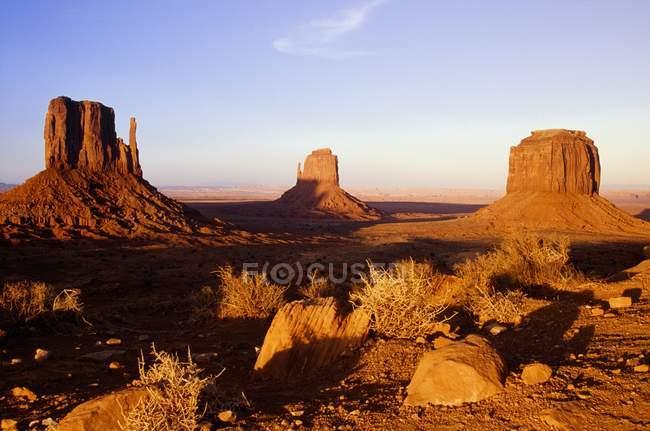 Vale com rochas e plantas — Fotografia de Stock