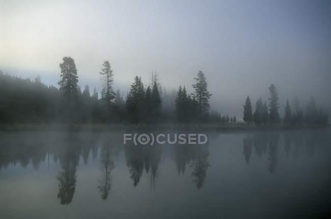 Morgennebel über dem Fluss — Stockfoto