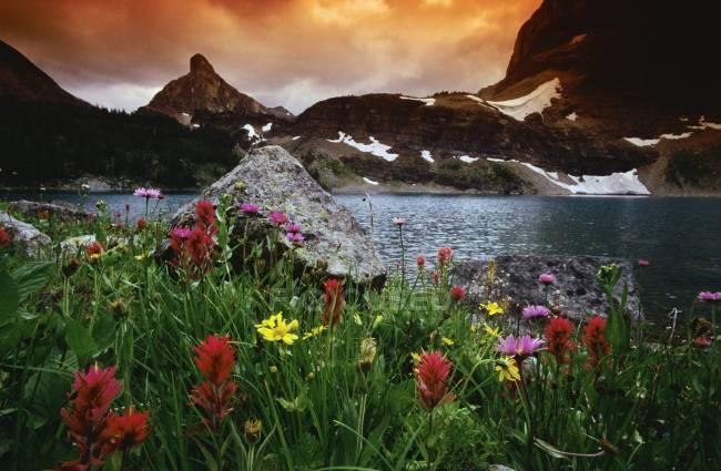 Lago do Egito, Parque Nacional de Banff — Fotografia de Stock