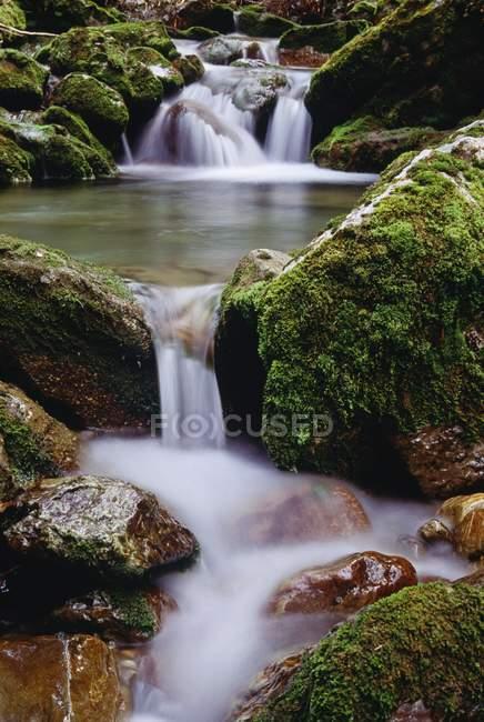 Rapid running mountain River — Stock Photo