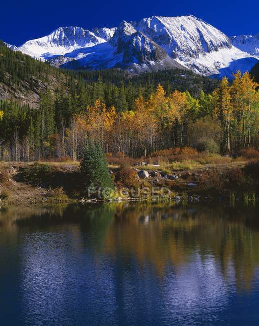 Mountain Reflection In Pond — Stock Photo