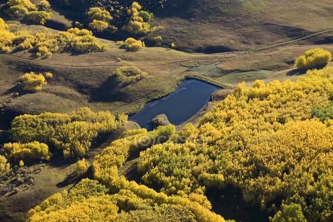 Goldener Herbst Farben In sanften Hügeln — Stockfoto