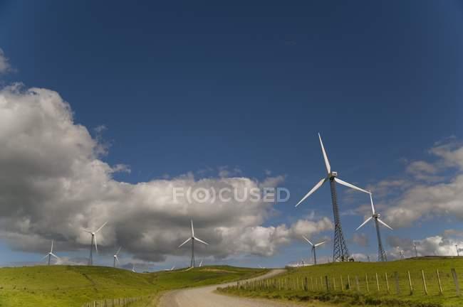 Ветрогенераторы в поле — стоковое фото