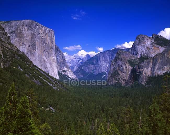 La vallée d'Yosemite, avec El Capitan — Photo de stock