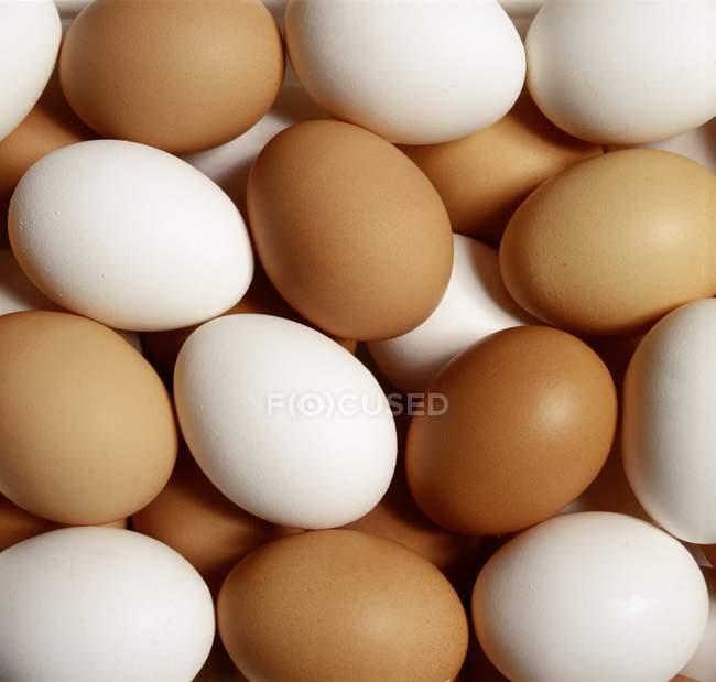 Белые и коричневые яйца — стоковое фото