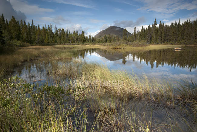Lago tranquilo e a montanha de Steamboat — Fotografia de Stock