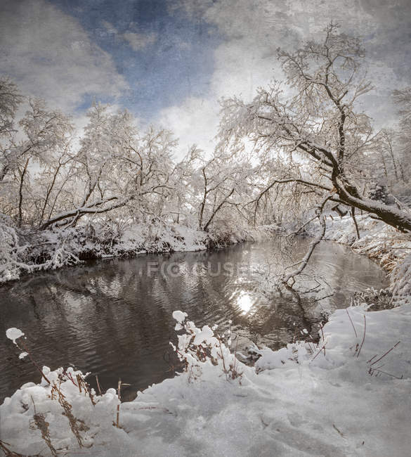Winter wonderland landscape — Stock Photo