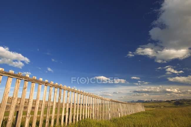 Cerca de madeira e pastos verdes — Fotografia de Stock