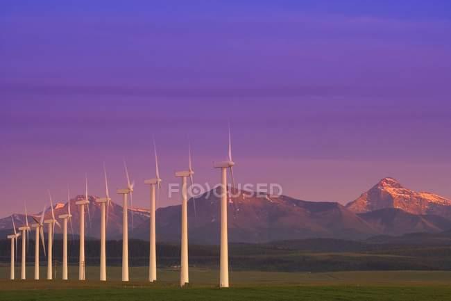 Rangée d'éoliennes — Photo de stock