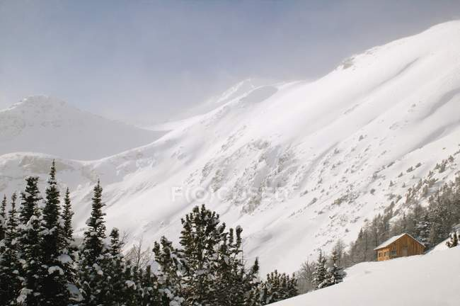 Cena de montanha com neve — Fotografia de Stock