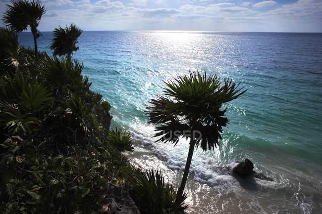 Spiaggia tropicale di sabbia — Foto stock